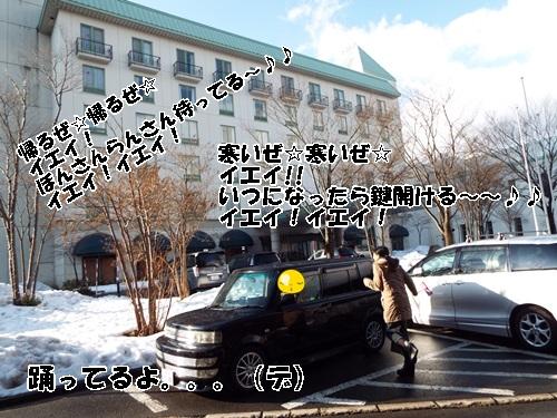 DSCF0393.jpg