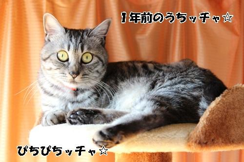 IMG_1710.jpg