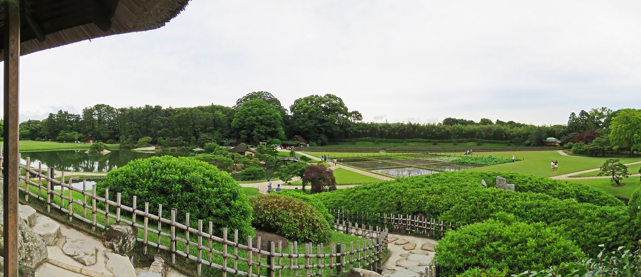 s-20150609 後楽園唯心山六角堂から眺めた今日の園内ワイド風景 (1)