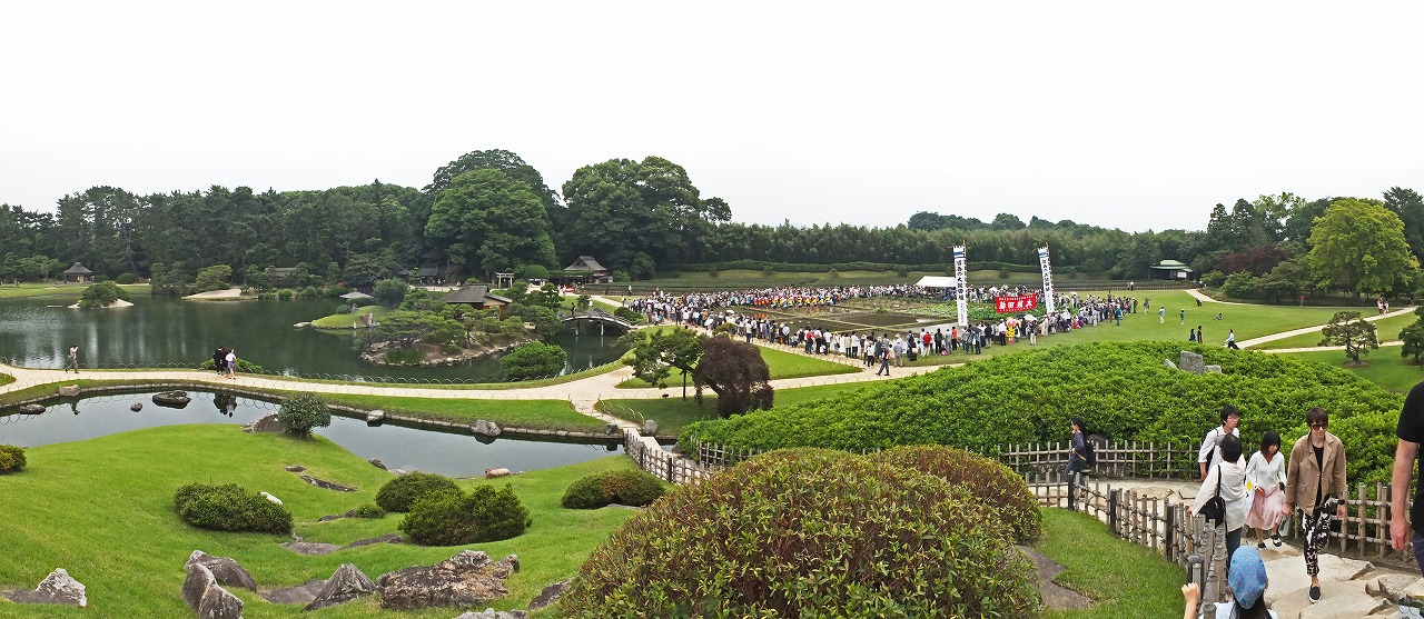 s-20150614 後楽園お田植え祭の田植えが始まった様子のワイド風景 (1)