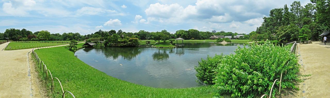 s-20150620 後楽園今日の園内沢の池ワイド風景 (1)