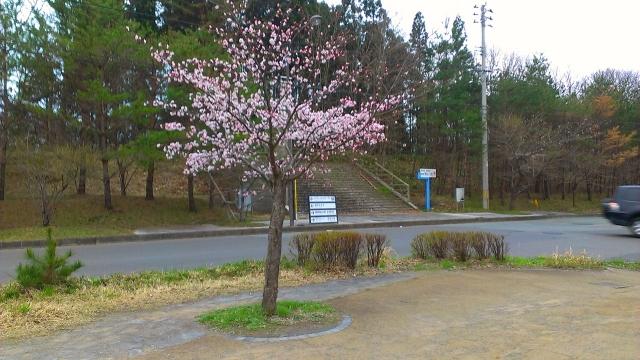 2015-04-13_17-52-06.jpg