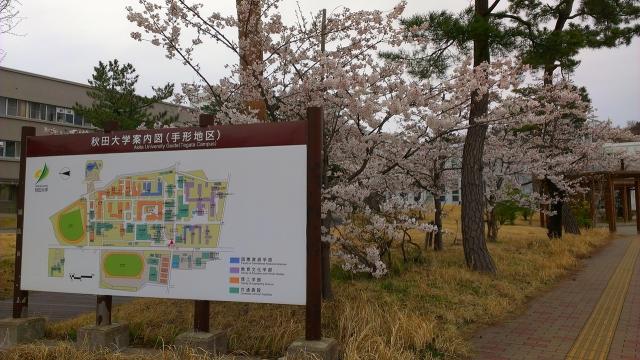 2015-04-14_16-54-08.jpg