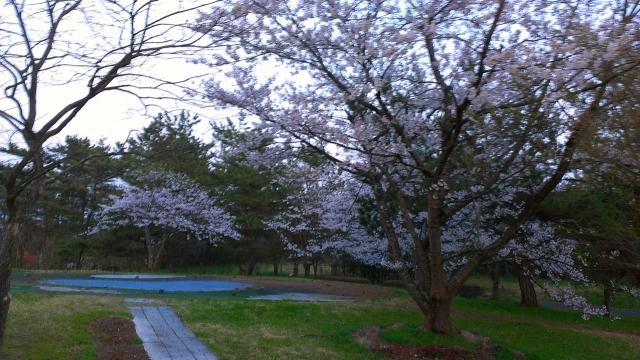 2015-04-18_18-14-58.jpg