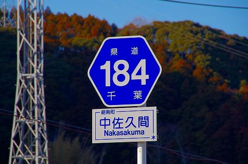 IMGP9755.jpg