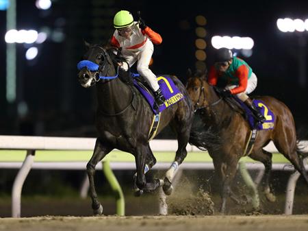 【競馬】ダノンレジェンドがミルコに載り代わり。丸田クビに