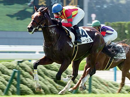 【競馬】初戦の衝撃!超大物と絶賛されて速攻駄馬になった馬