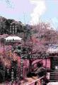 3浄瑠璃寺