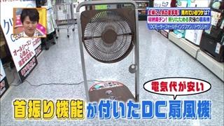 dc-fldfan-005.jpg