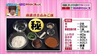 mabo-rice2-001.jpg