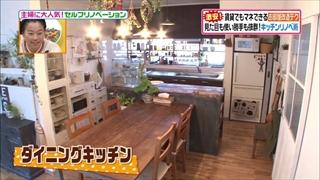 self-renovation-20150120-018.jpg
