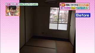 self-renovation-20150519-004.jpg