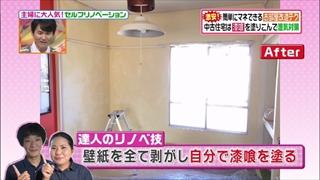 self-renovation-20150519-012.jpg