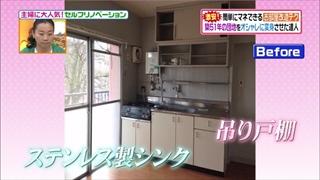 self-renovation-20150519-020.jpg
