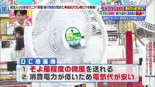 yuasa-dc-001.jpg
