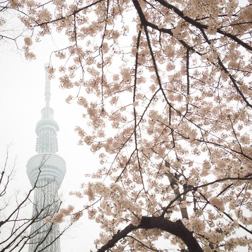 2015 Tokyo Skytree