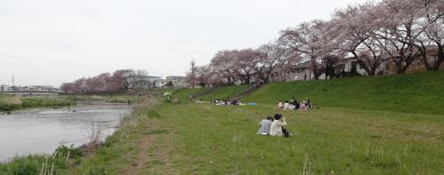 柳瀬川畔_convert