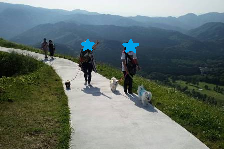 伊豆大室山3-2