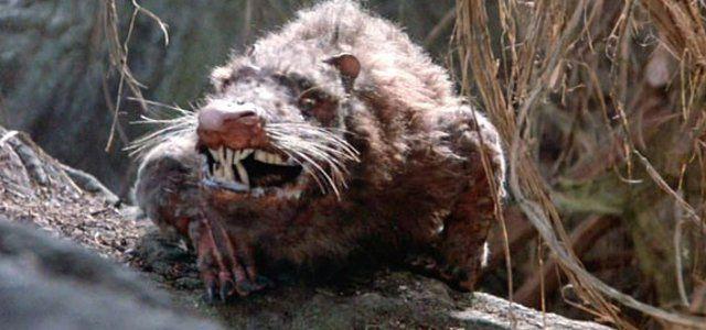 ネズミの本当の恐ろしさを可視化してみました