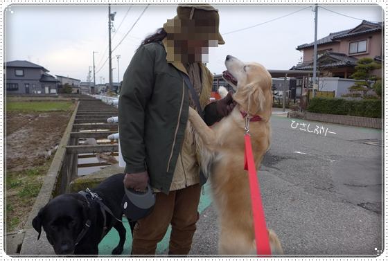 2015,1,21お散歩6