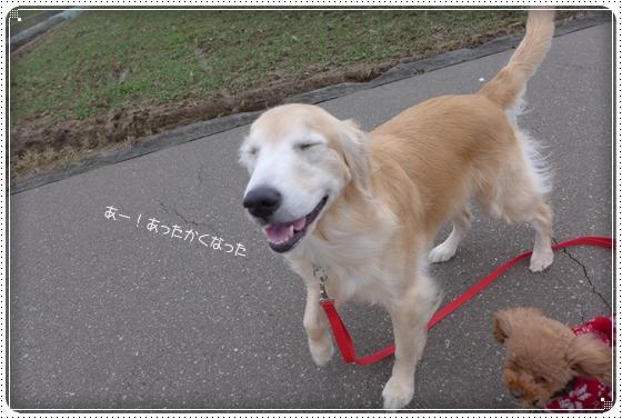 2015,1,29お散歩10