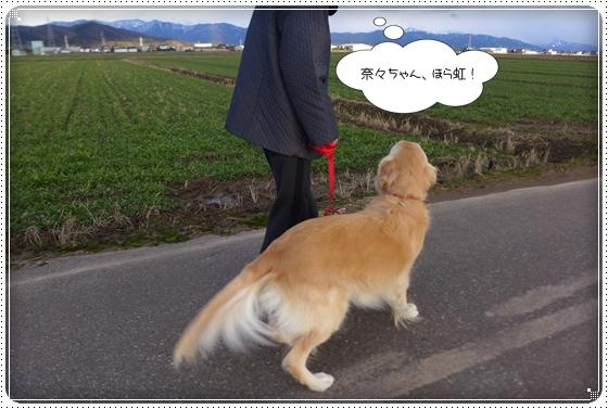 2015,2,6お散歩10