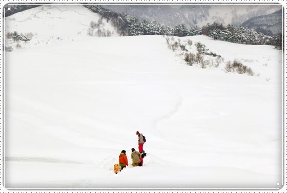 2015,2,11雪遊び7
