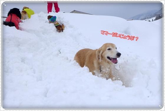 2015,2,12雪遊び5