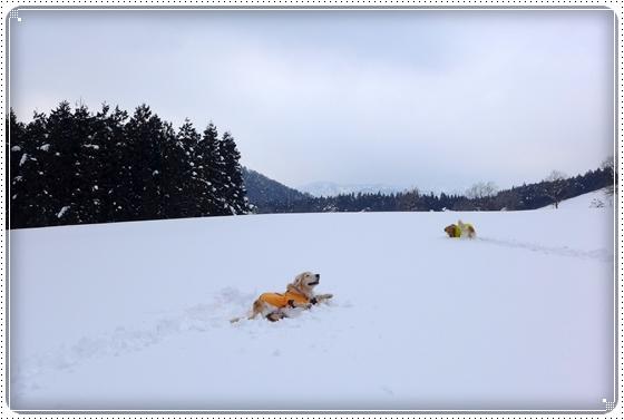 2015,2,12雪遊び7