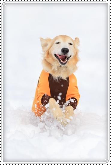 2015,2,21雪遊び5