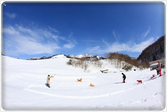 2015,2,21雪遊び1