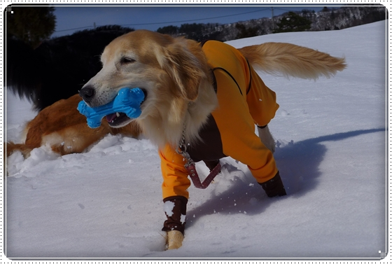 2015,2,22雪遊び11