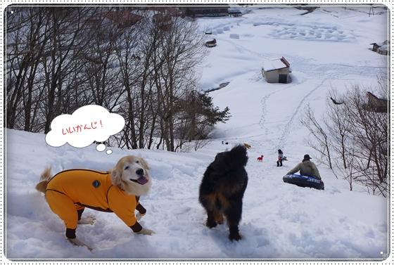 2015,2,23雪遊び4