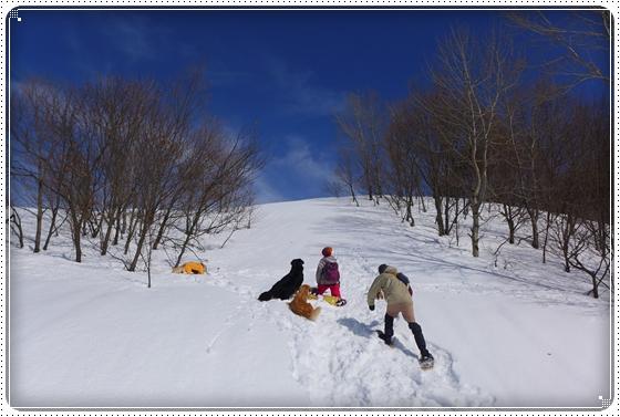 2015,2,23雪遊び1