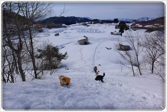 2015,2,23雪遊び2