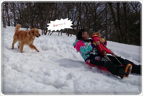2015,2,23雪遊び9
