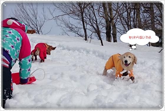 2015,2,23雪遊び8