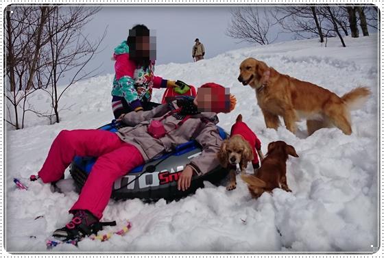2015,2,23雪遊び7