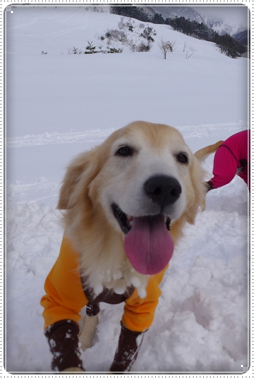 2015,2,28雪遊び7