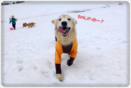 2015,3,8雪遊び2