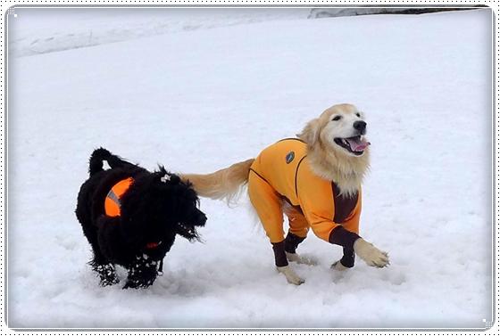 2015,3,9雪遊び5