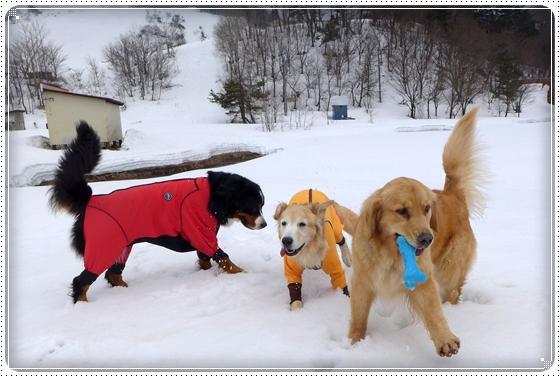2015,3,9雪遊び21