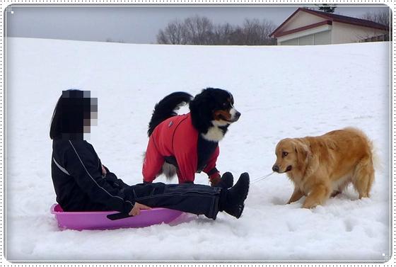 2015,3,10雪遊び11