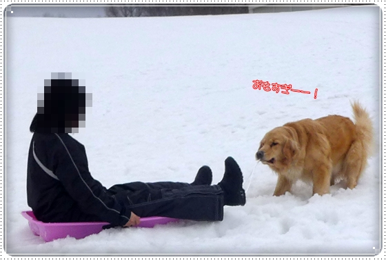 2015,3,10雪遊び12