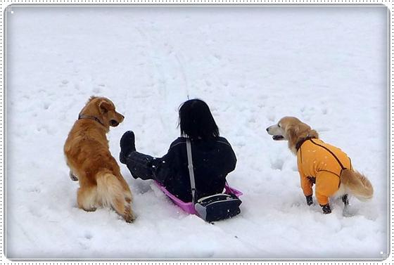 2015,3,10雪遊び10