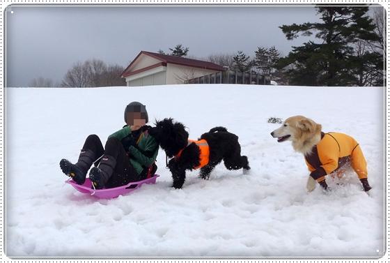 2015,3,10雪遊び7