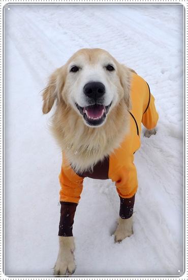 2015,3,10雪遊び14