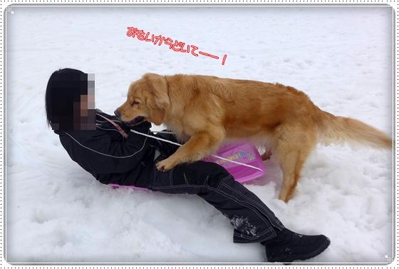 2015,3,10雪遊び13