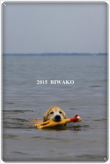 2015,5,9琵琶湖1