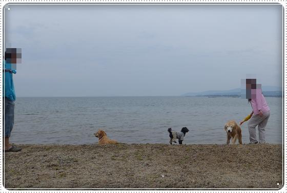 2015,5,10琵琶湖15